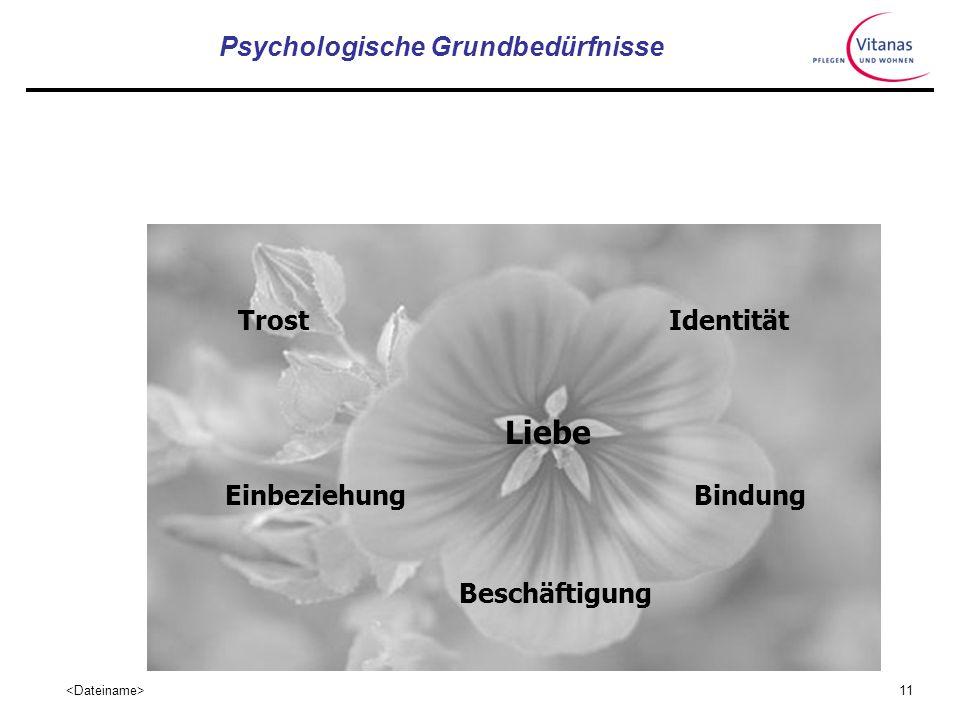 Psychologische Grundbedürfnisse