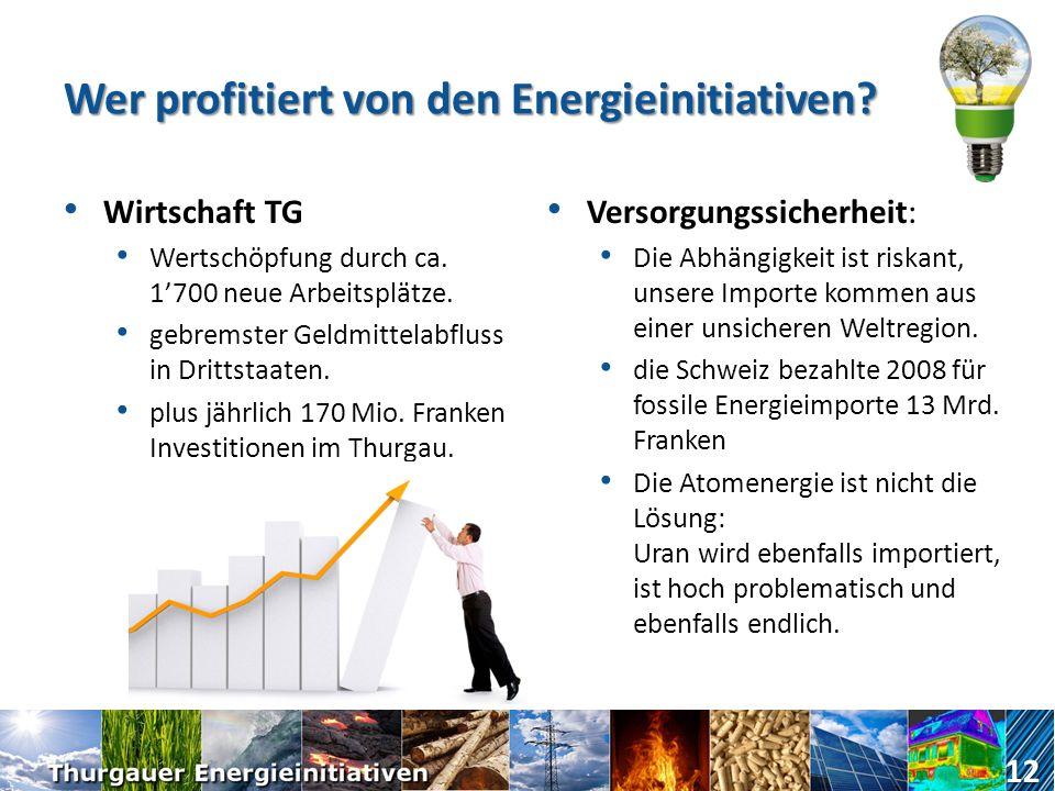Wer profitiert von den Energieinitiativen