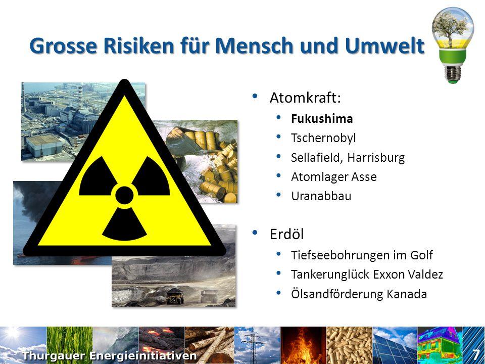 Grosse Risiken für Mensch und Umwelt