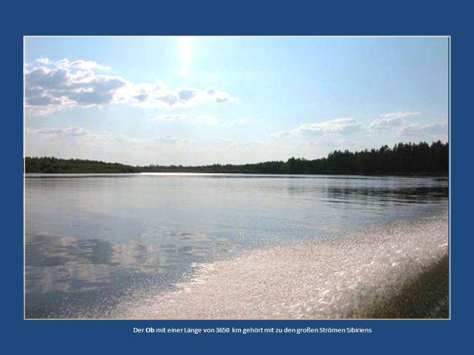 Der Ob mit einer Länge von 3650 km gehört mit zu den großen Strömen Sibiriens