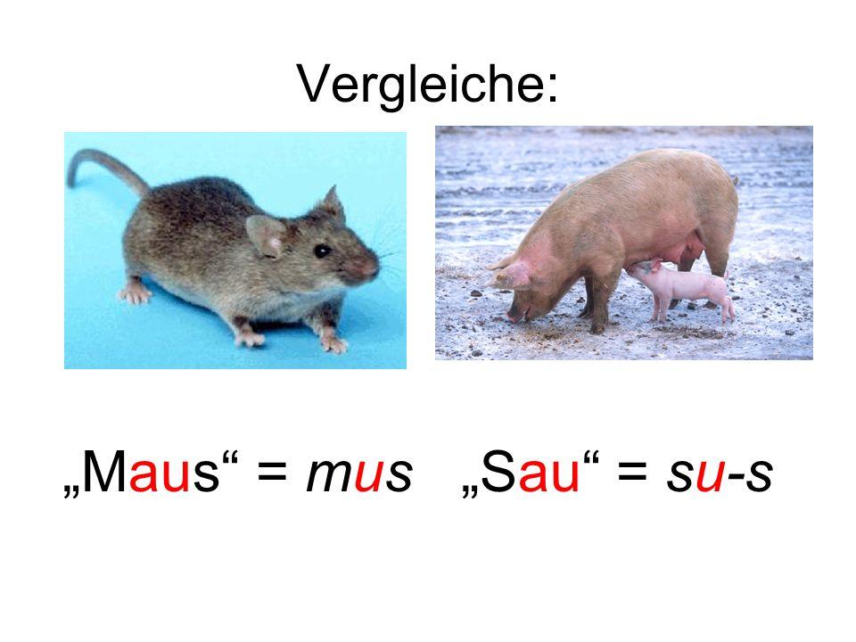 """Maus = mus ""Sau = su-s"
