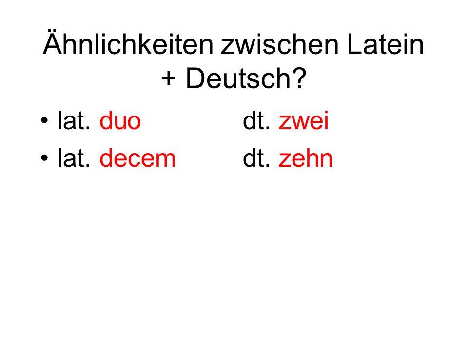 Ähnlichkeiten zwischen Latein + Deutsch