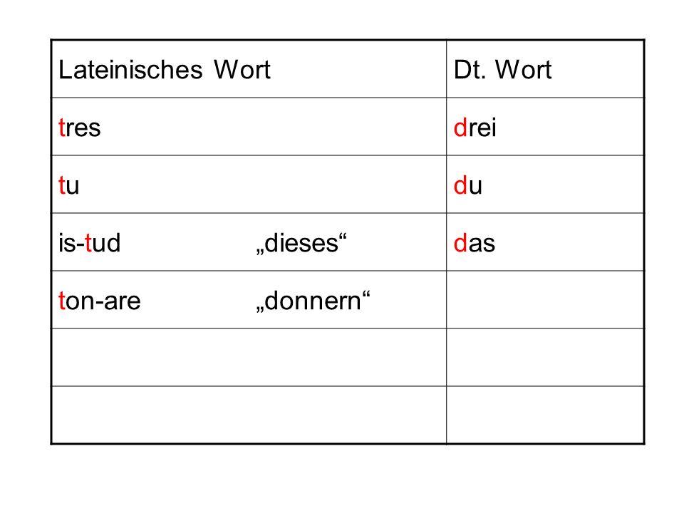 """Lateinisches Wort Dt. Wort tres drei tu du is-tud """"dieses das ton-are """"donnern"""