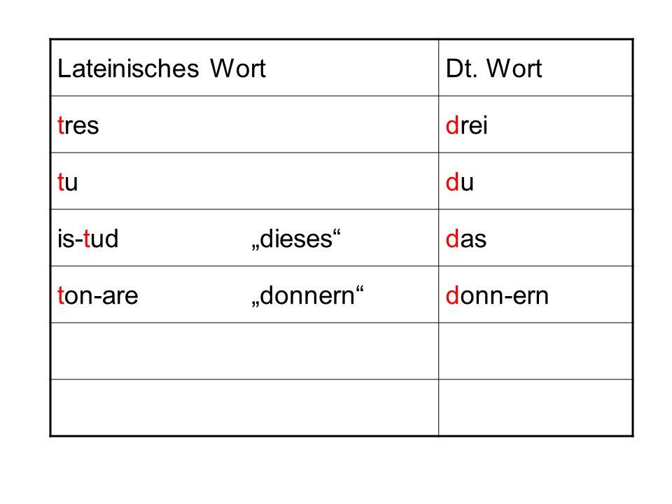 """Lateinisches Wort Dt. Wort tres drei tu du is-tud """"dieses das ton-are """"donnern donn-ern"""