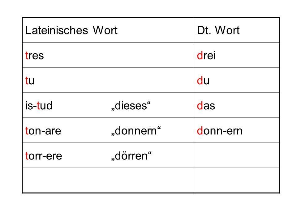 """Lateinisches WortDt. Wort. tres. drei. tu. du. is-tud. """"dieses das. ton-are. """"donnern donn-ern. torr-ere."""
