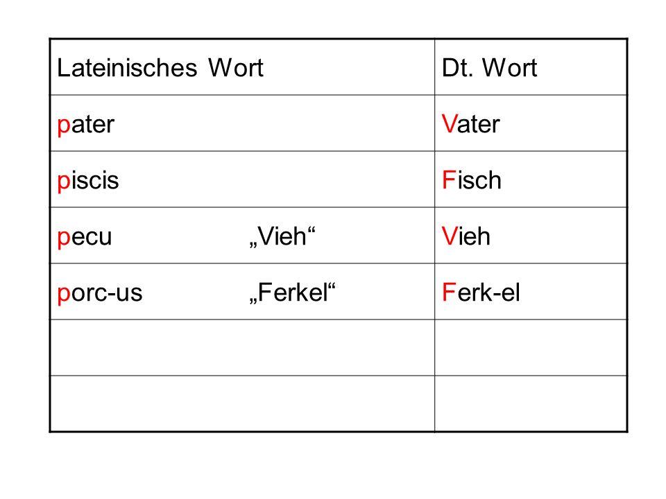 """Lateinisches Wort Dt. Wort pater Vater piscis Fisch pecu """"Vieh Vieh porc-us """"Ferkel Ferk-el"""