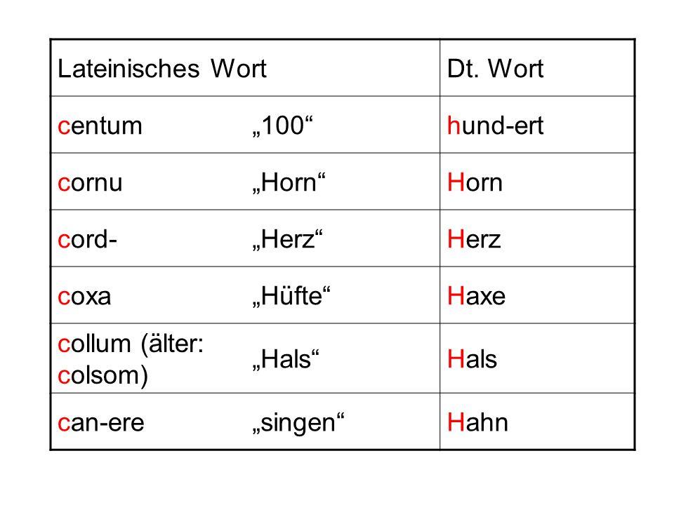"""Lateinisches Wort Dt. Wort. centum. """"100 hund-ert. cornu. """"Horn Horn. cord- """"Herz Herz."""