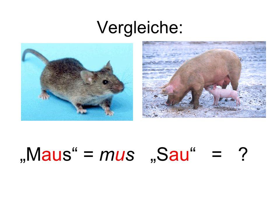 """Vergleiche: """"Maus = mus """"Sau ="""