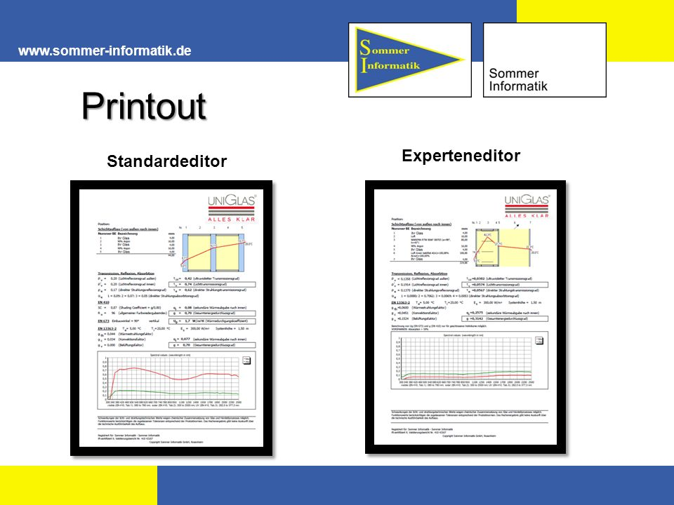 www.sommer-informatik.de Printout Experteneditor Standardeditor