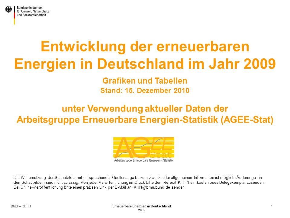 Entwicklung der erneuerbaren Energien in Deutschland im Jahr 2009