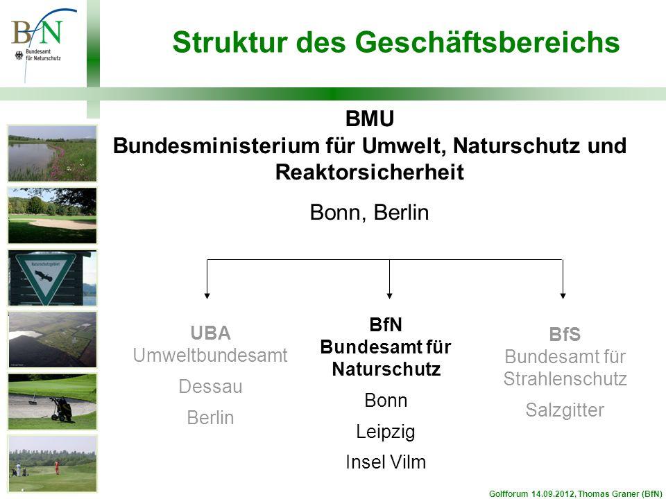 Struktur des Geschäftsbereichs