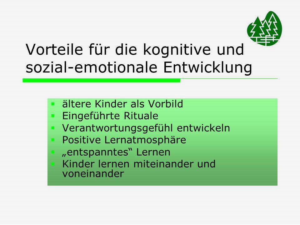 Vorteile für die kognitive und sozial-emotionale Entwicklung