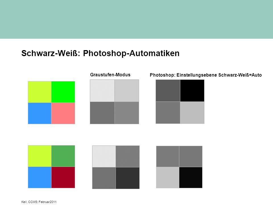 Schwarz-Weiß: Photoshop-Automatiken