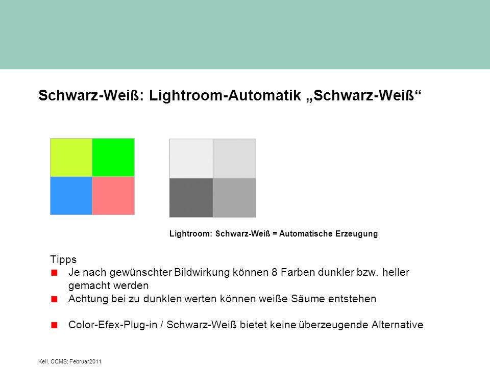 """Schwarz-Weiß: Lightroom-Automatik """"Schwarz-Weiß"""