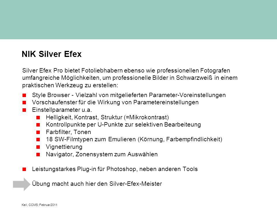 NIK Silver Efex