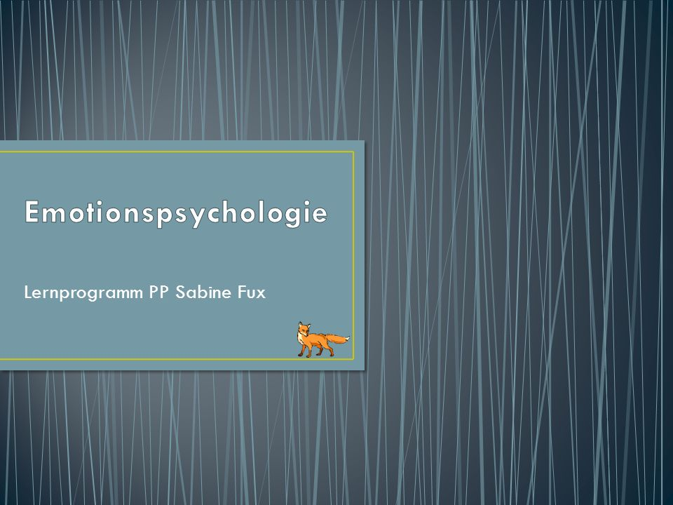 Lernprogramm PP Sabine Fux