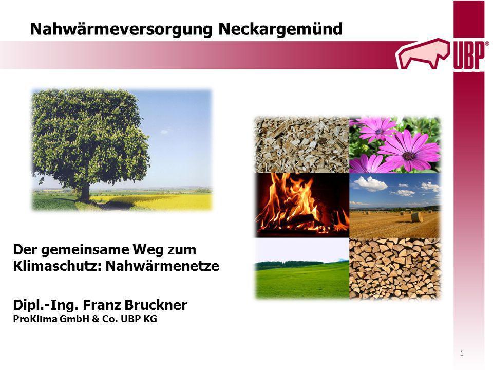 Nahwärmeversorgung Neckargemünd