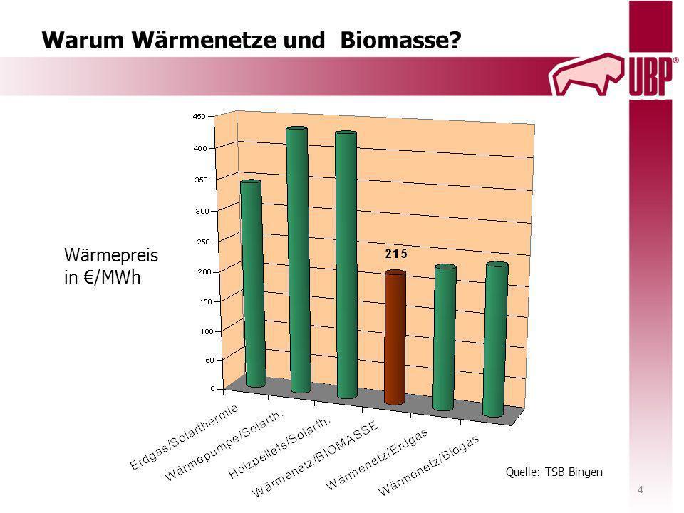 Warum Wärmenetze und Biomasse