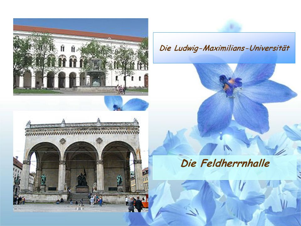 Die Ludwig-Maximilians-Universität