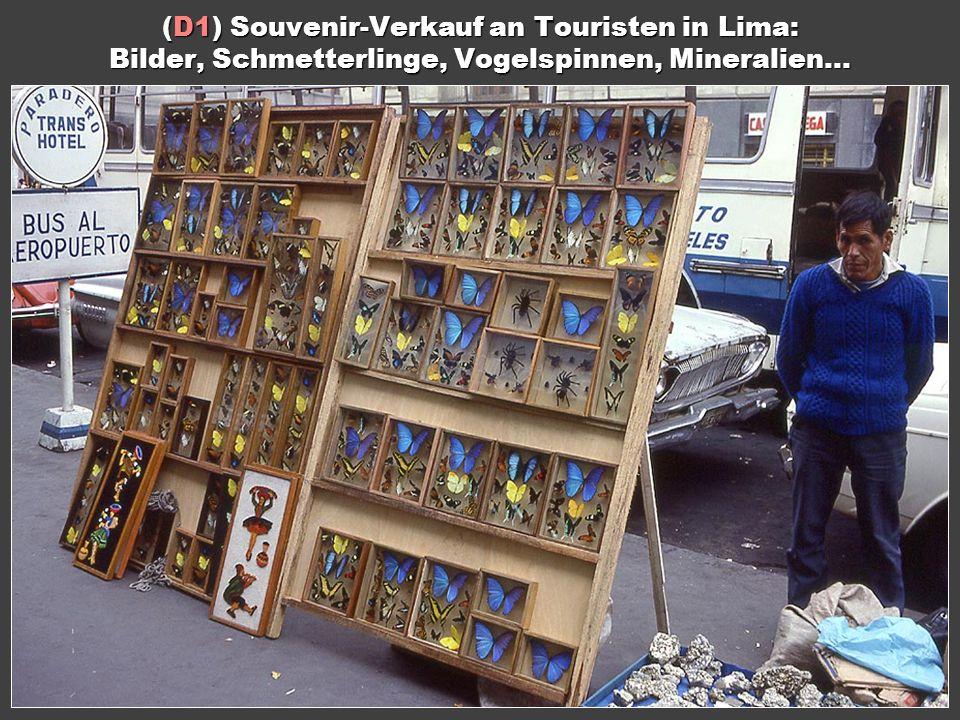 (D1) Souvenir-Verkauf an Touristen in Lima: Bilder, Schmetterlinge, Vogelspinnen, Mineralien...