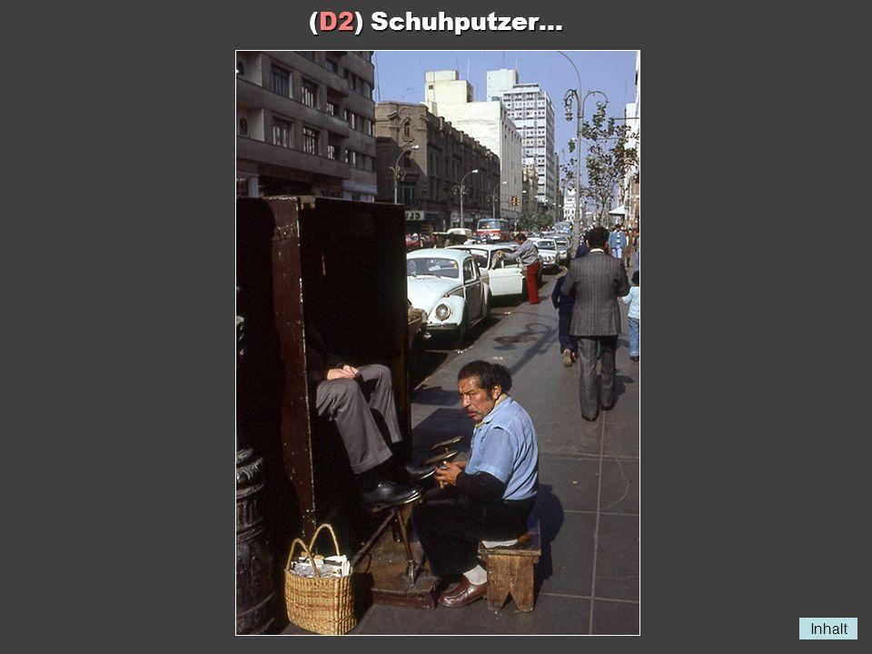 (D2) Schuhputzer...