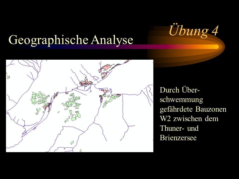 Übung 4 Geographische Analyse