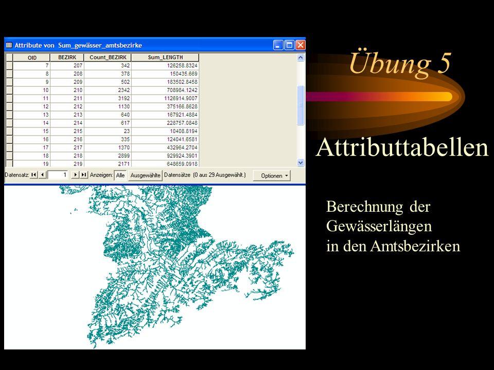 Übung 5 Attributtabellen Berechnung der Gewässerlängen