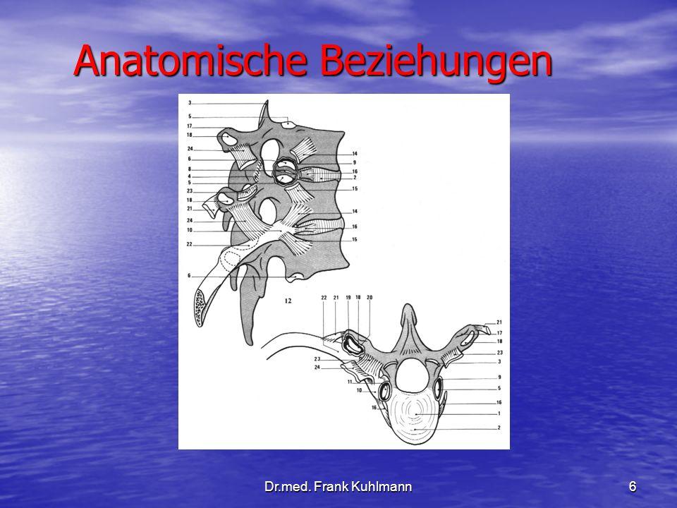 Anatomische Beziehungen