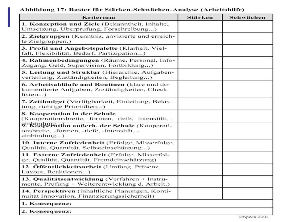 Abbildung 29: 4.8 Instrument IV: Stärken-Schwächen-Analyse