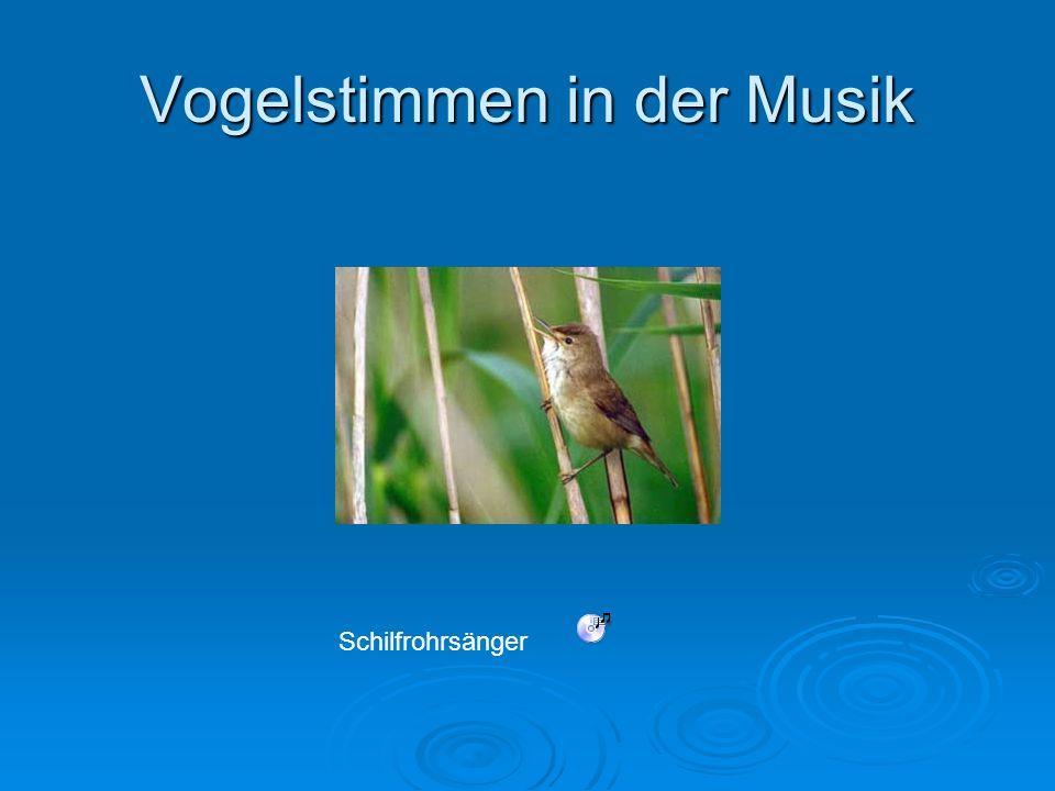 Vogelstimmen in der Musik