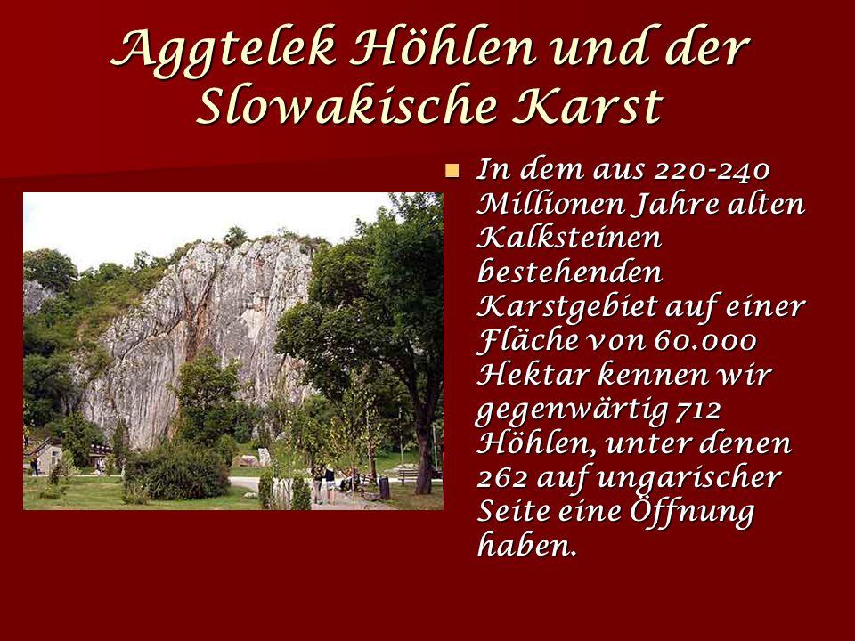 Aggtelek Höhlen und der Slowakische Karst