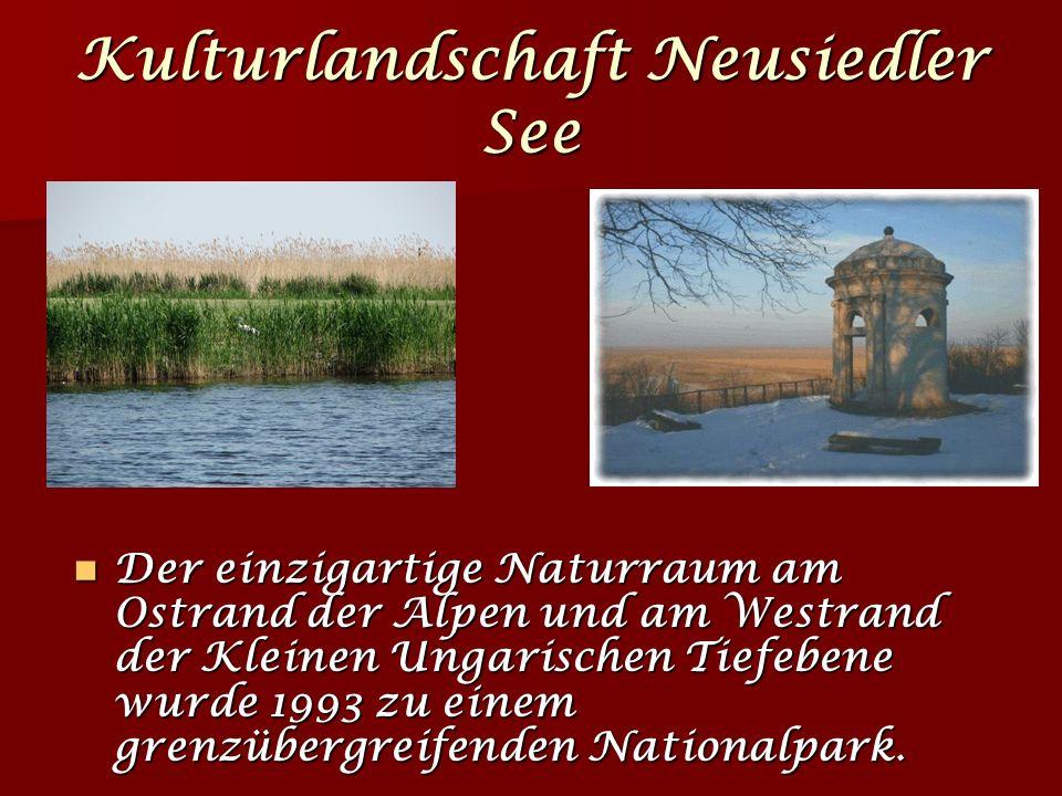 Kulturlandschaft Neusiedler See