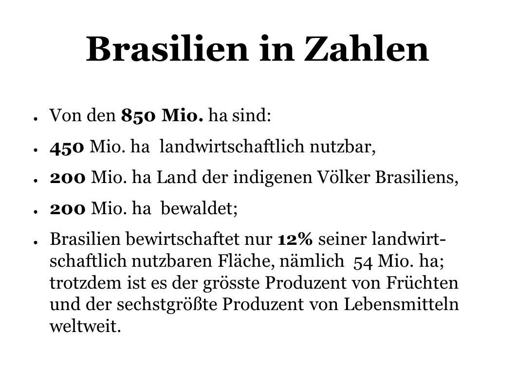 Brasilien in Zahlen Von den 850 Mio. ha sind: