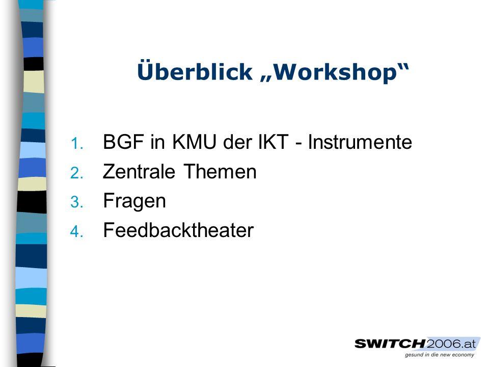 """Überblick """"Workshop BGF in KMU der IKT - Instrumente Zentrale Themen"""