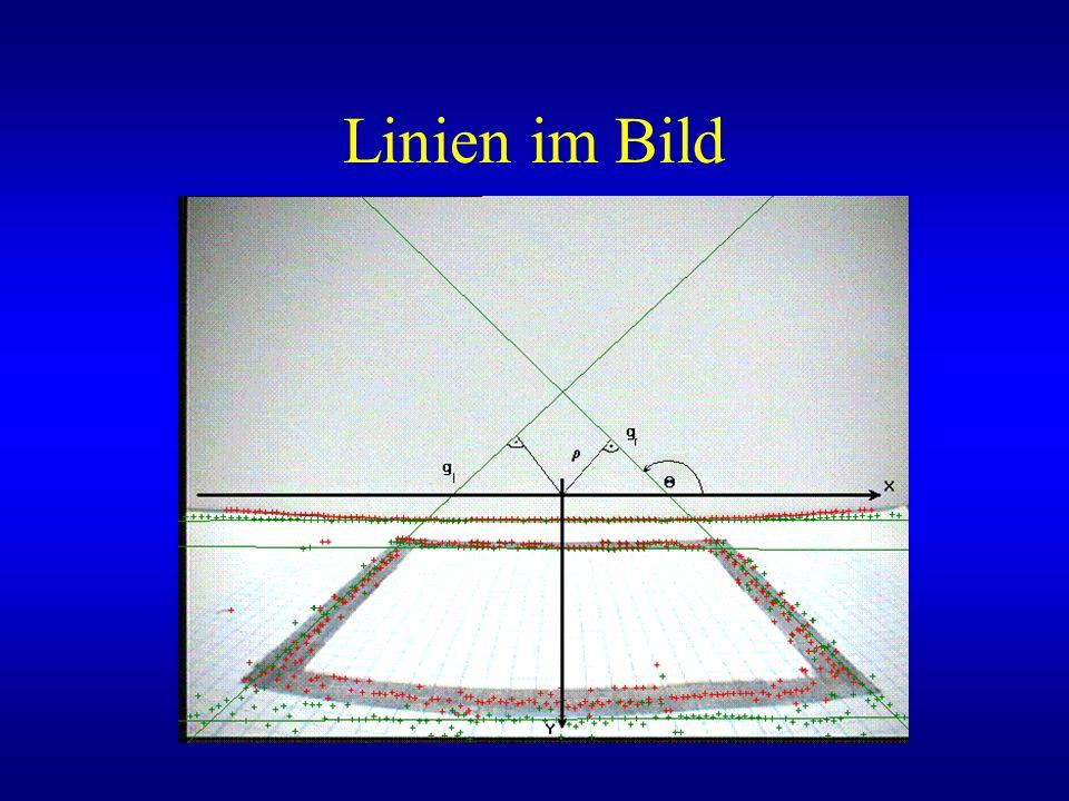 Linien im Bild