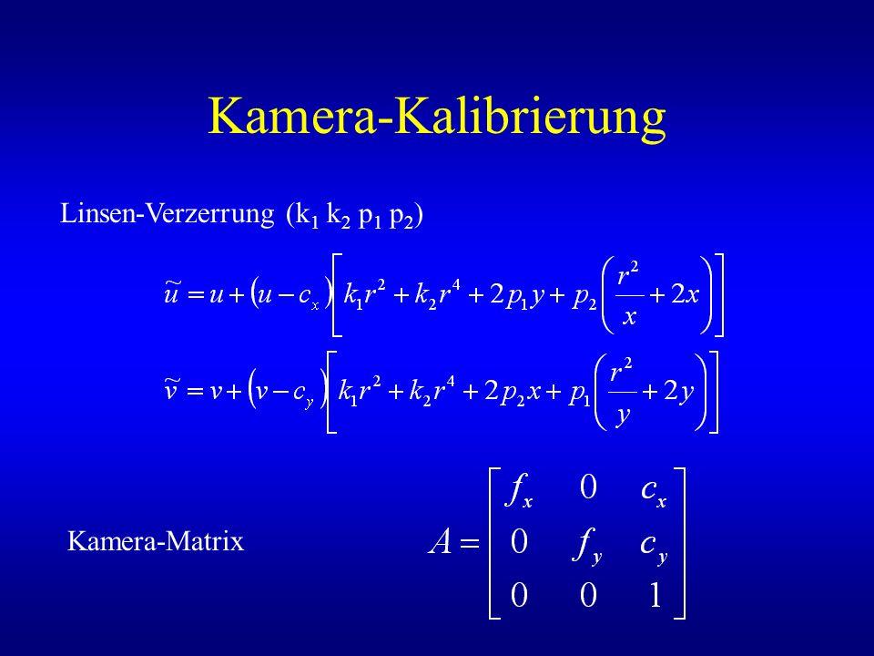 Kamera-Kalibrierung Linsen-Verzerrung (k1 k2 p1 p2) Kamera-Matrix