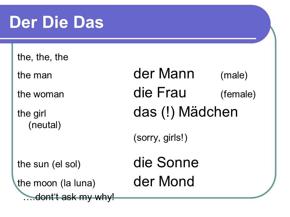 Der Die Das the, the, the the man der Mann (male)