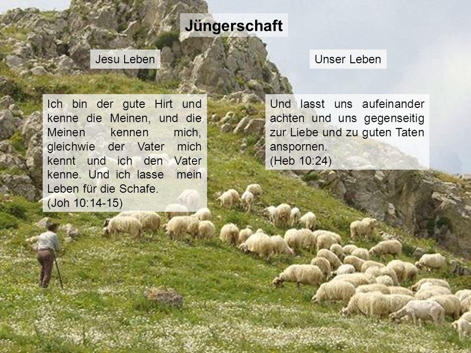 Jüngerschaft Jesu Leben Unser Leben