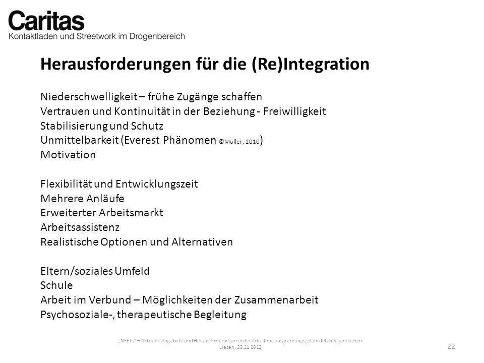 Herausforderungen für die (Re)Integration