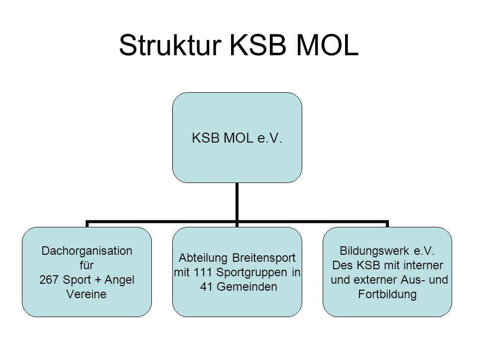 Struktur KSB MOL