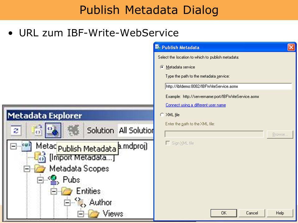 Publish Metadata Dialog