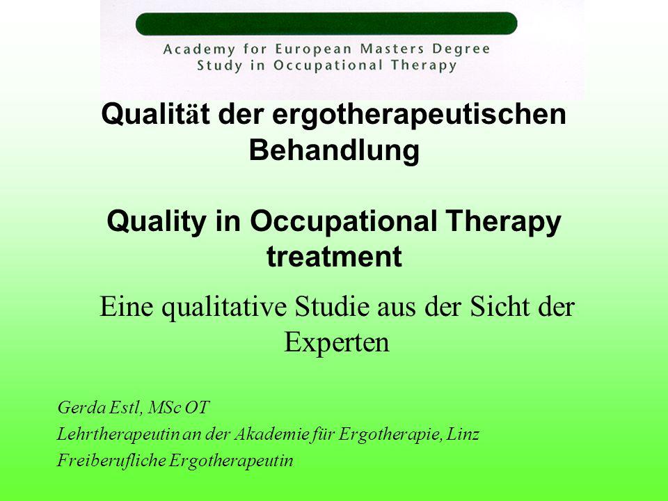 Eine qualitative Studie aus der Sicht der Experten