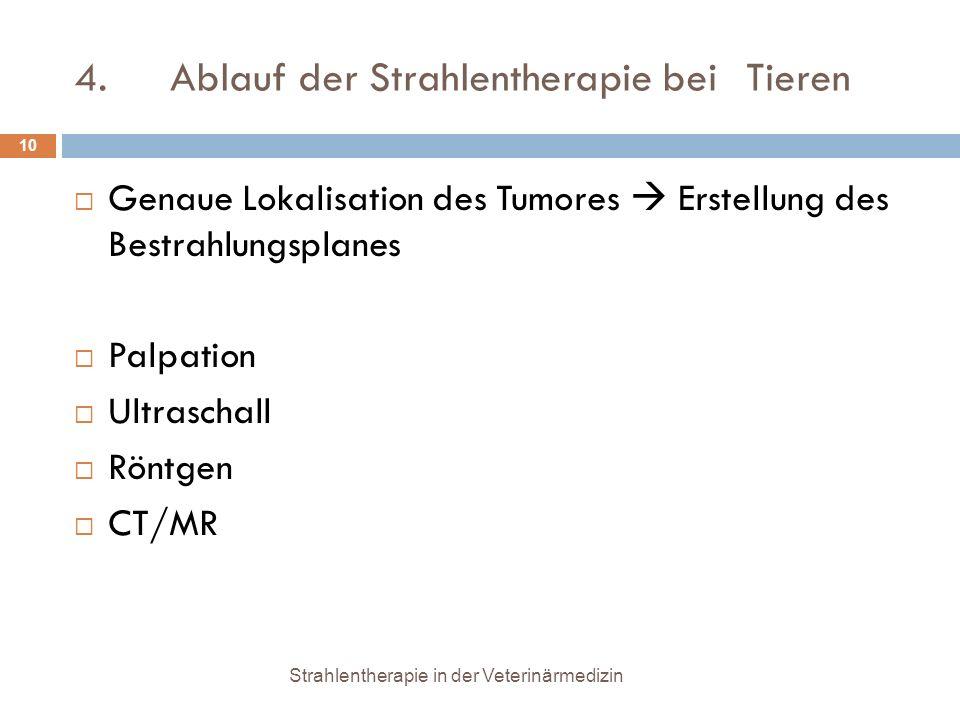 4. Ablauf der Strahlentherapie bei Tieren