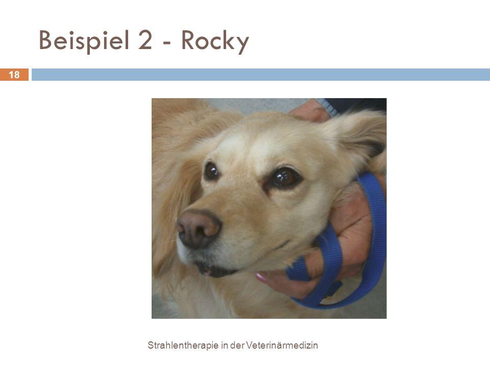 Beispiel 2 - Rocky Strahlentherapie in der Veterinärmedizin
