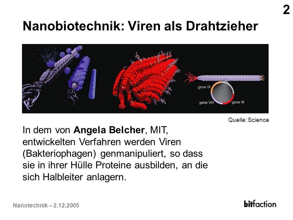 Nanobiotechnik: Viren als Drahtzieher