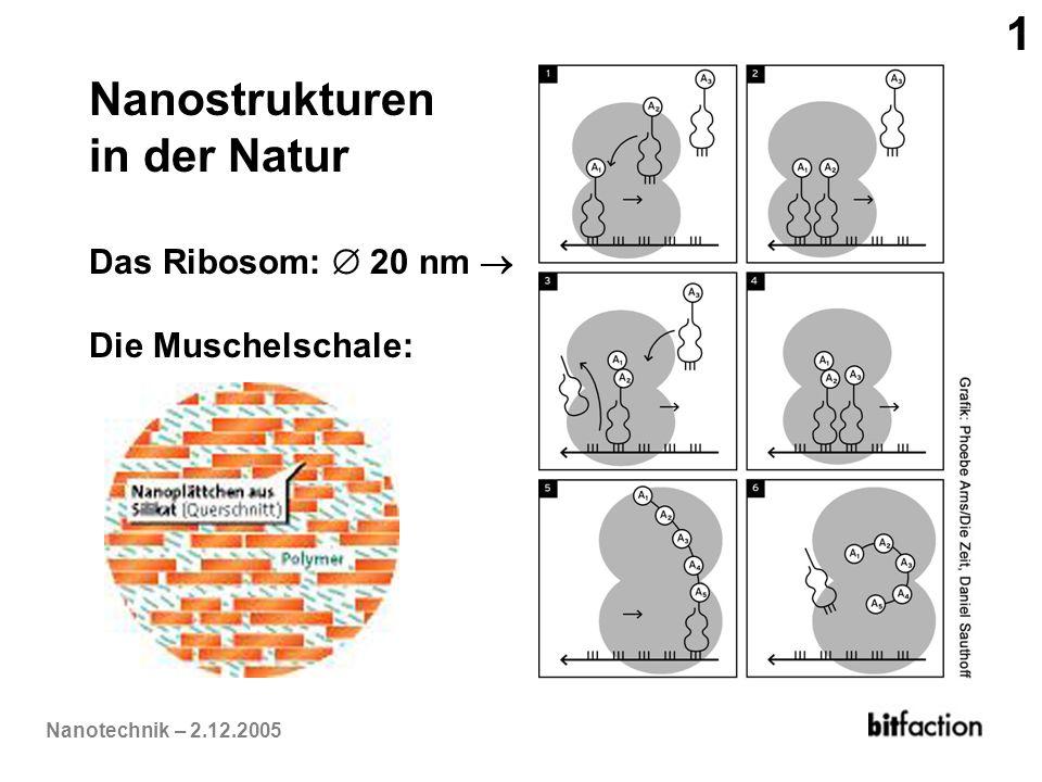 Nanostrukturen in der Natur
