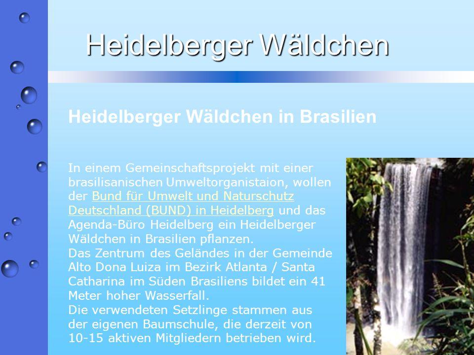 Heidelberger Wäldchen