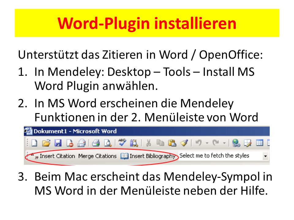 Word-Plugin installieren