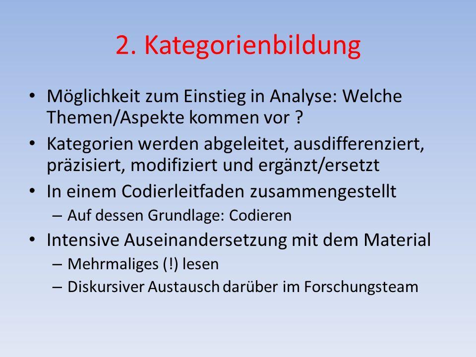2. Kategorienbildung Möglichkeit zum Einstieg in Analyse: Welche Themen/Aspekte kommen vor