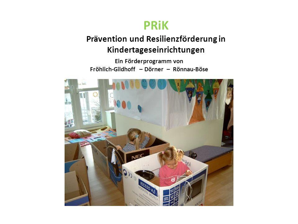 Ein Förderprogramm von Fröhlich-Gildhoff – Dörner – Rönnau-Böse